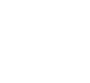 IBM Silver Buiness Partner